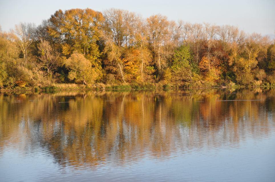 Reflets d'automne sur la Loire