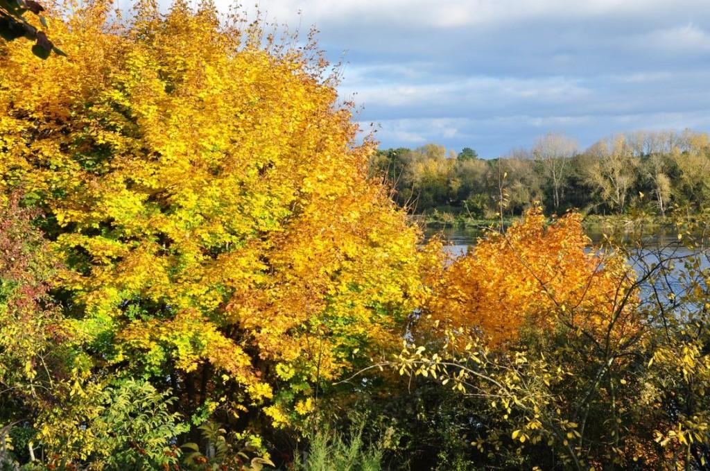 L'automne dans toute sa splendeur