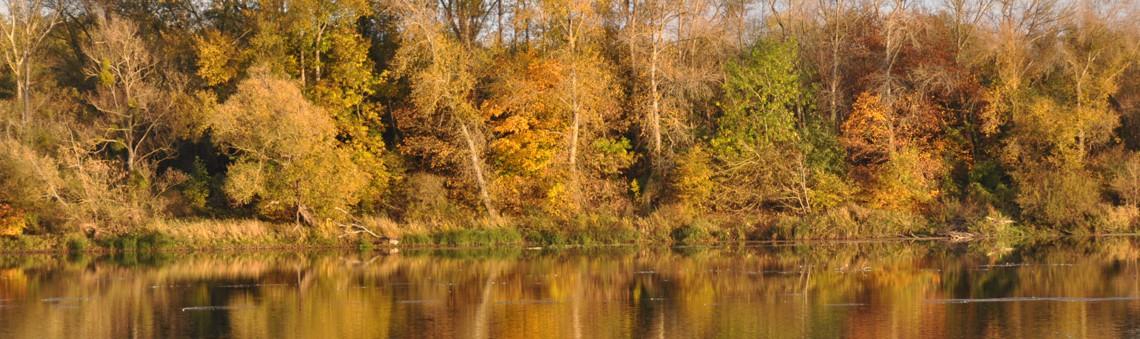 Quand les reflets se fonde dans les couleurs d'automne