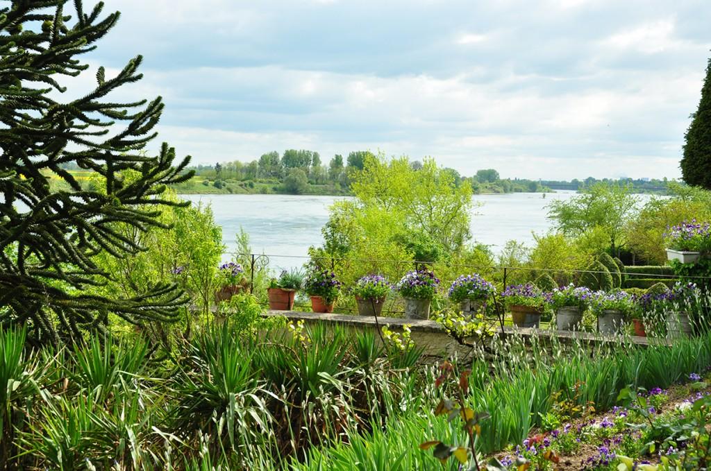 Vue de la Loire et haut de la serre