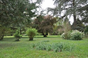 Elements_du_jardin_10