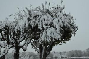 En_hiver_01