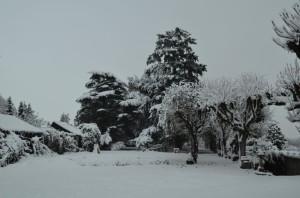 En_hiver_02